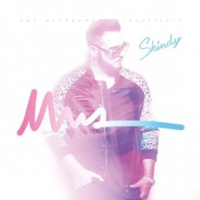 Shindy - NWA Album Cover Standard