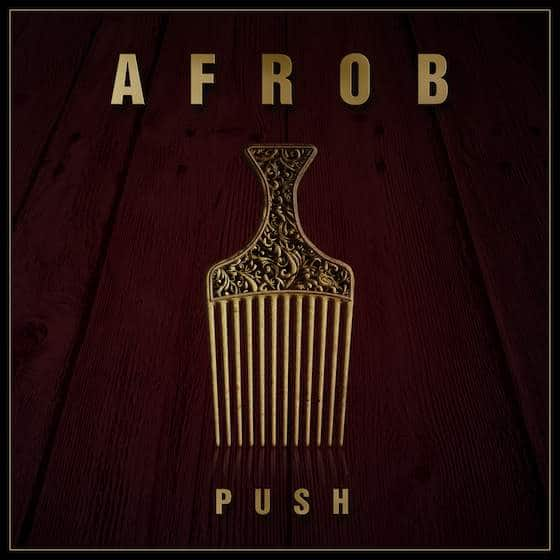 Afrob – Push Album Cover