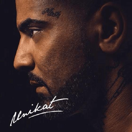 Mosh36 – Unikat Album Cover