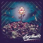Separate - Warheit Album Covers