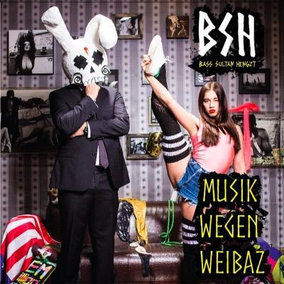 Bass Sultan Hengzt – Musik wegen Weibaz Album Cover