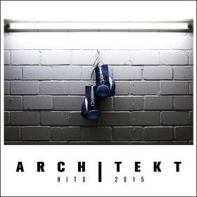 Architekt - Hits 2015 Album Cover