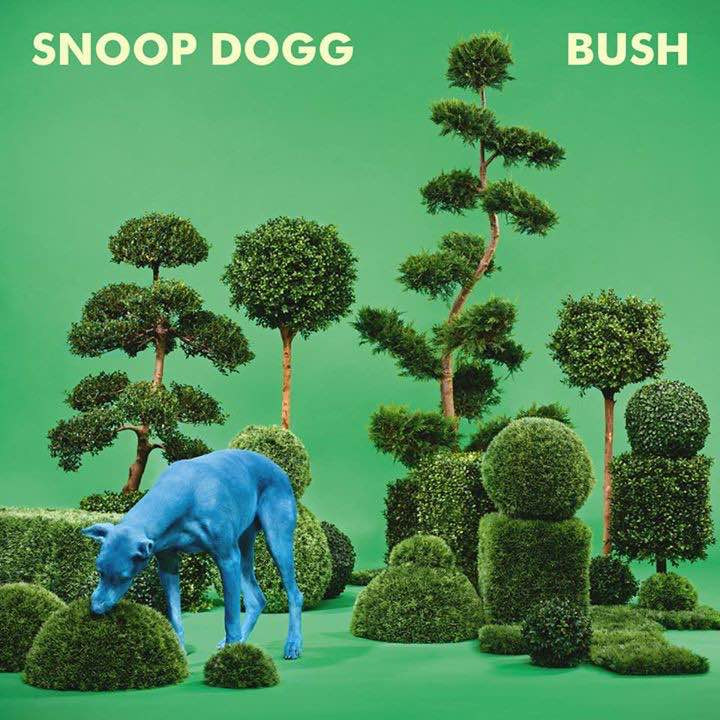 Snoop Dogg – Bush Album Cover