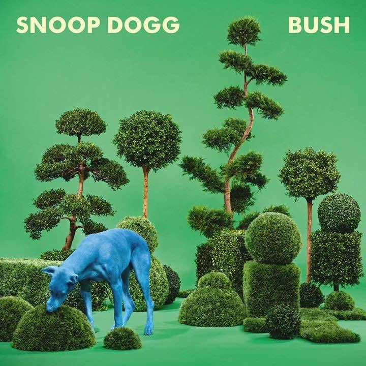 Snoop Dogg – Bush Album Cover