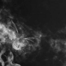 AzudemSK - Blessed in Dreck Album Cover