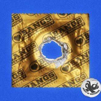 Bangs - Alles gefickt Album Cover