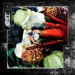 The Cratez - Nonstop Album Cover