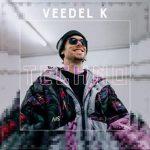Veedel Kaztro - Techno Album Cover